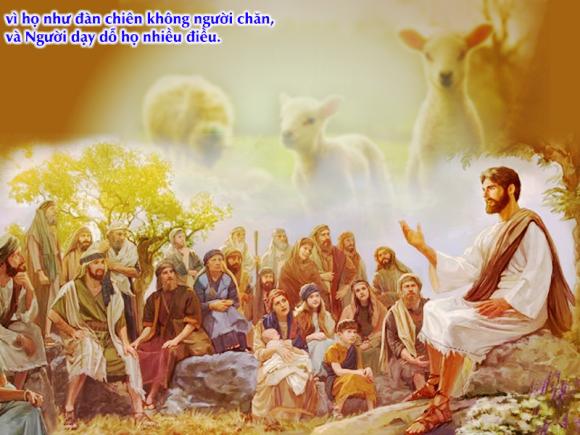 Tìm kiếm lương thực thiêng liêng. Suy niệm Tin mừng CN 16 TN
